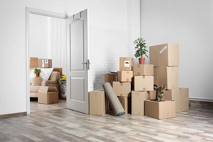 shipping household goods overseas